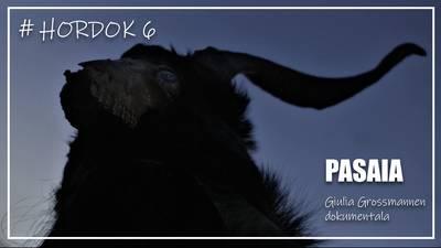 HORDOK #6 Pasaia